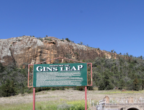 Gins Leap